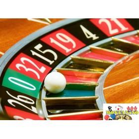 Pallina professionale per roulette  -19041