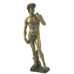 Statua David di Michelangelo 24130